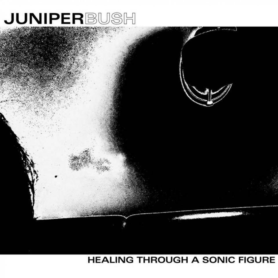Healing Through A Sonic Figure